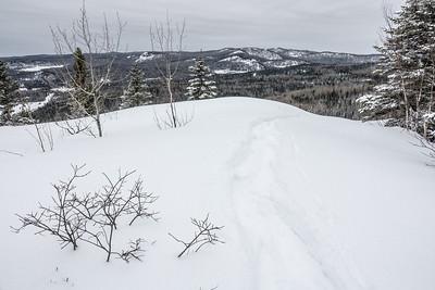 """Snowshoeing Mt. Josephine"""