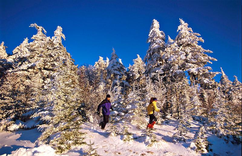 Snowshoeing-02