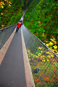 Capilano-Bridge-1