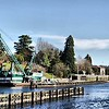 Ballard Locks - Microsoft ICE stitch - Noiseware - Paint.net (Oil) - Jan 2015