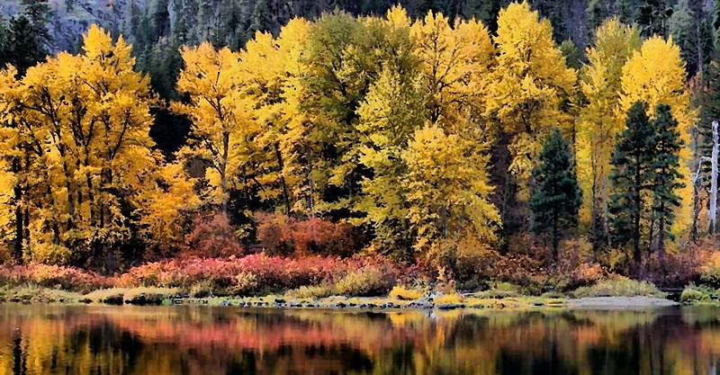 Oil Effect of Tumwater Canyon Fall Colors