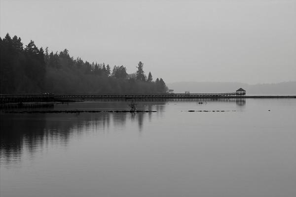 Black and White - NNWR - January 2015
