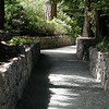 """Had to stop and shoot this image of """"Path"""""""