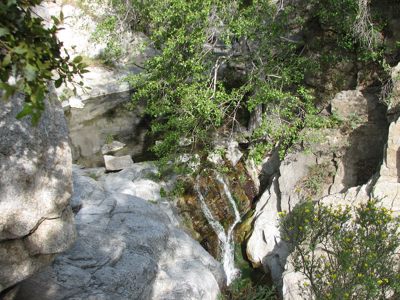 This is the upper part of Sturtevant Falls, viewed from the trail that passes above them. I'm standing at the top of a near-vertical rock face, which would have been fun to rappel down (but I don't know if that would be allowed).