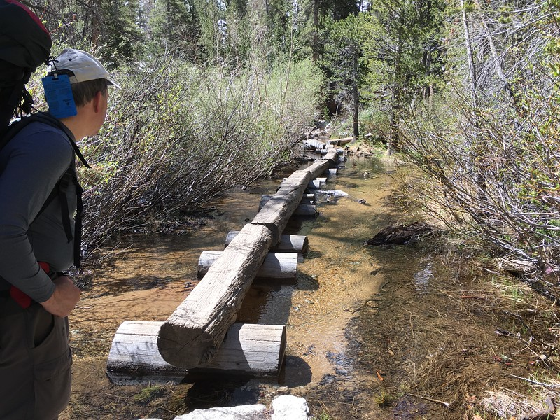 The creek crossing with all the logs