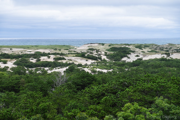 view from the Province Lands Visitor Center, Cape Cod National Seashore