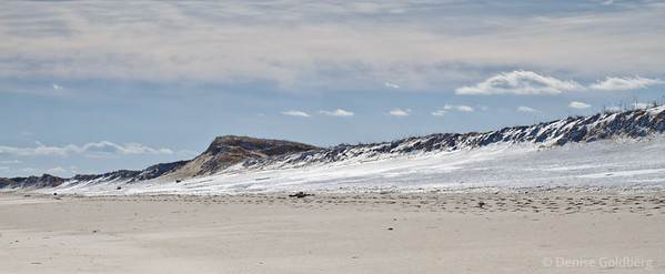 snow and sand dunes, at the Parker River National Wildlife Refuge on a very cold January day