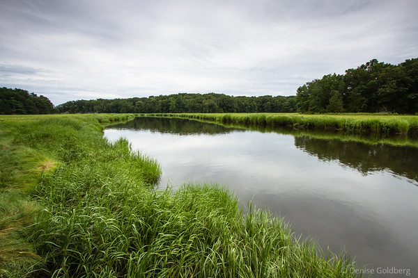 wetlands and the water of a quiet river, near Old Town Hill in Newbury, MA