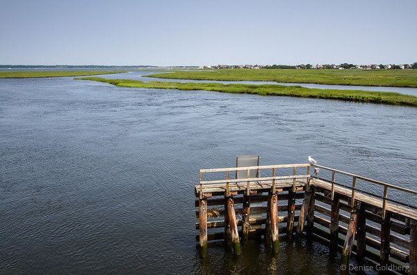 looking to the north from the bridge to Plum Island