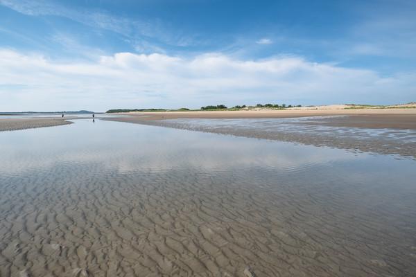 low tide, Parker River National Wildlife Refuge