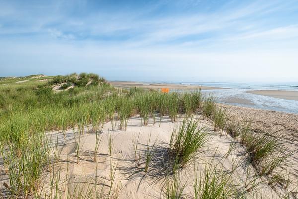 dunes and ocean, Parker River National Wildlife Refuge