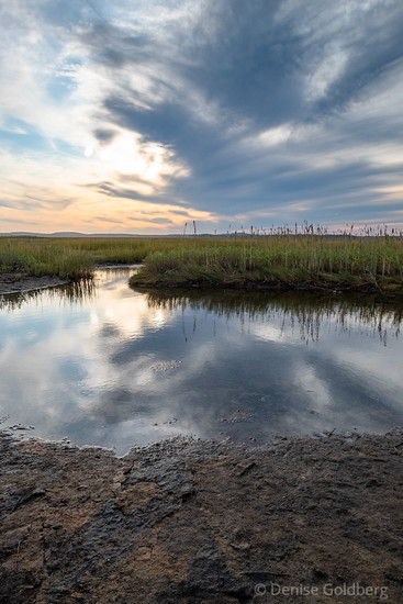 late day light on the North Pool Dike, Parker River National Wildlife Refuge