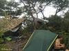 @CJ's tent, @david and my hammock.