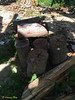 Nice firewood.