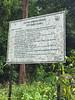 Bintang Hijau Permanent Forest Reserve.