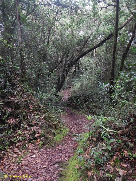 """A walk in the park.<br /> <br /> <br /> <br /> Album: <a href=""""https://www.facebook.com/media/set/?set=a.10154598392598529.1073742084.645243528&type=3"""">https://www.facebook.com/media/set/?set=a.10154598392598529.1073742084.645243528&type=3</a>"""