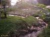 Stream flowing thru the farmland.