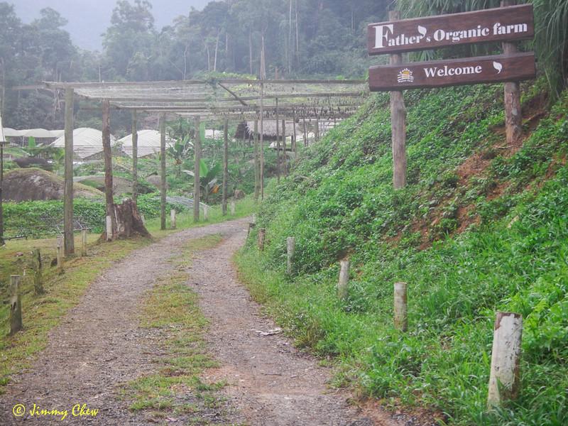 Father's Organic Farm