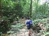 The first water source on the way up to Bukit Chenuang. Quasi river trekking begins now.