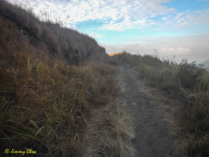 """A walk in the park"" type of terrain. So far, so good."