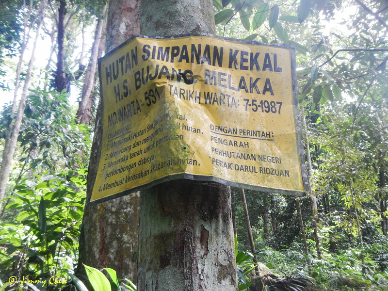 Some call this area Hutan Lipur Sungai Salu.