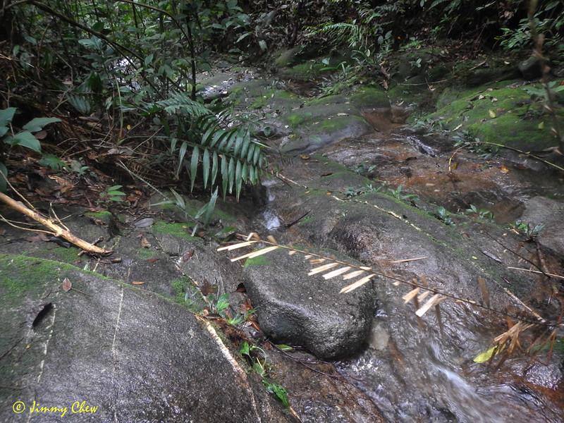 Water source at Kem Lebah (lower).