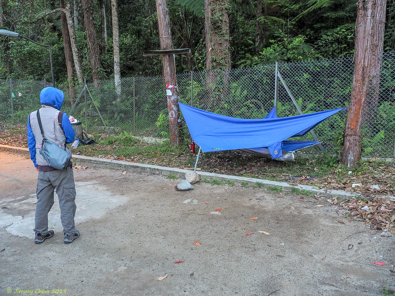 Ooi's hammock right by the fence - not easy to tie that end of the flysheet.