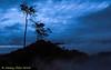 Dawn shot<br /> <br /> #dawn