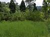 Vast grassland area.