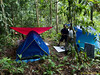 My tent (left) and Tan Keng Heng's...<br /> <br /> Stanley Wong said he very long time didn't sleep inside tent. That's understandable... LOL<br /> — with Tan Keng Heng and Loi Tc.