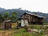 Orang Asli settlement.<br /> — at Bentong Pahang..
