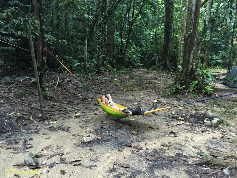 Strung up a long hammock.