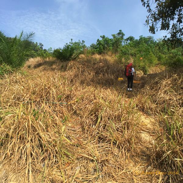 Descending the dry trail...