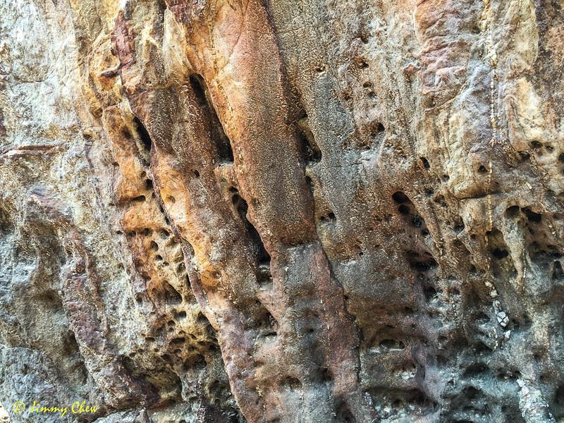 Nice natural texture.