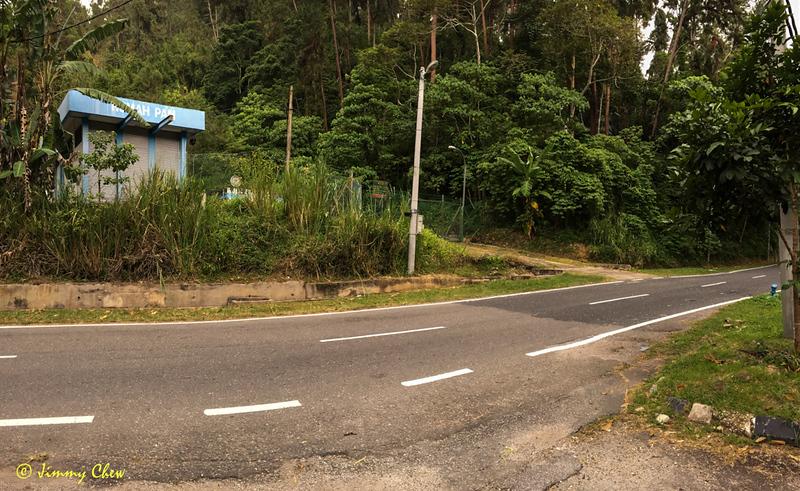 Trailhead is just at the side across the car park of Hutan Lipur Konifer.