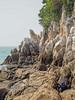 The Batu Putih tail getting closer.<br /> <br /> #CapeRachado #TanjungTuan<br /> #cliff