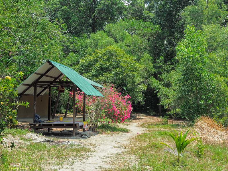 Campsite<br /> <br /> #CapeRachado #TanjungTuan