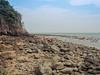 The barren landscape continues.<br /> <br /> #CapeRachado #TanjungTuan