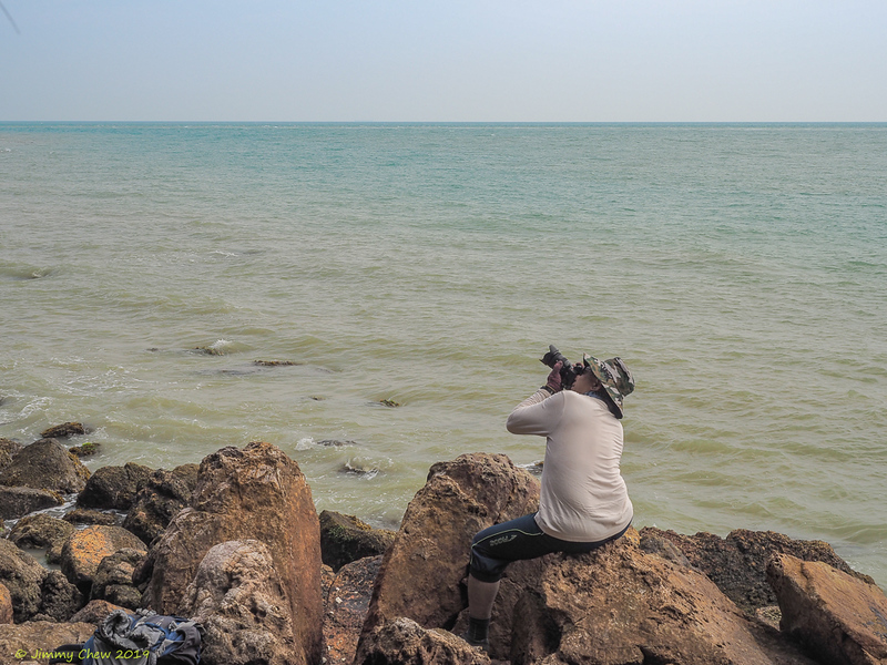 George not wasting time to capture shots of raptors.<br /> <br /> #CapeRachado #TanjungTuan