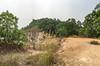 A look at Bukit Sapu Tangan area (beyond this little peak).