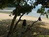 Monkey Bay.