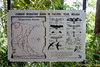 Signboard showing the common migratory birds in Cape Rachado.