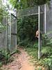 Kiara fence
