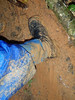 "OLYMPUS DIGITAL CAMERA<br /> This proves they are put to good use. The leech socks were great - no leeches ""caught"" by them!"