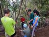 Free rock-climbing tutorial from Dee Lu.