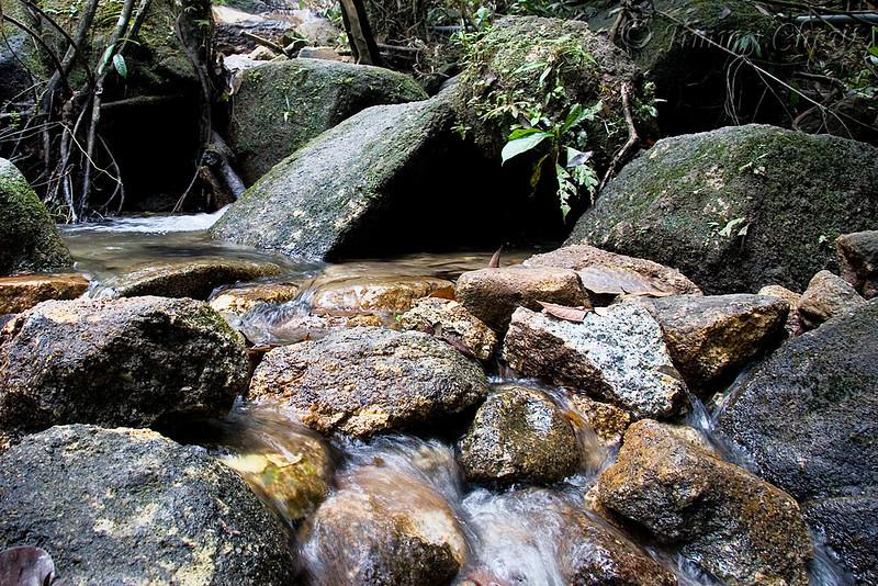 An invigorating stream.