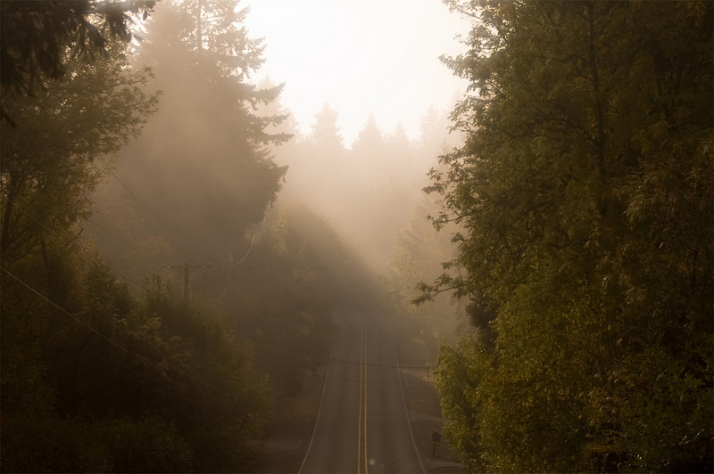 I took this picture while driving around in Salem, Oregon on a foggy morning. The sun was starting to come through the fog, and I just happen to have my camera with me.