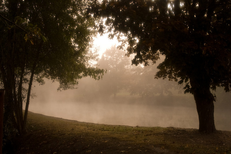 Foggy morning in Salem, Oregon. I was driving around and I came across this pond. Everything looked perfect for a picture.