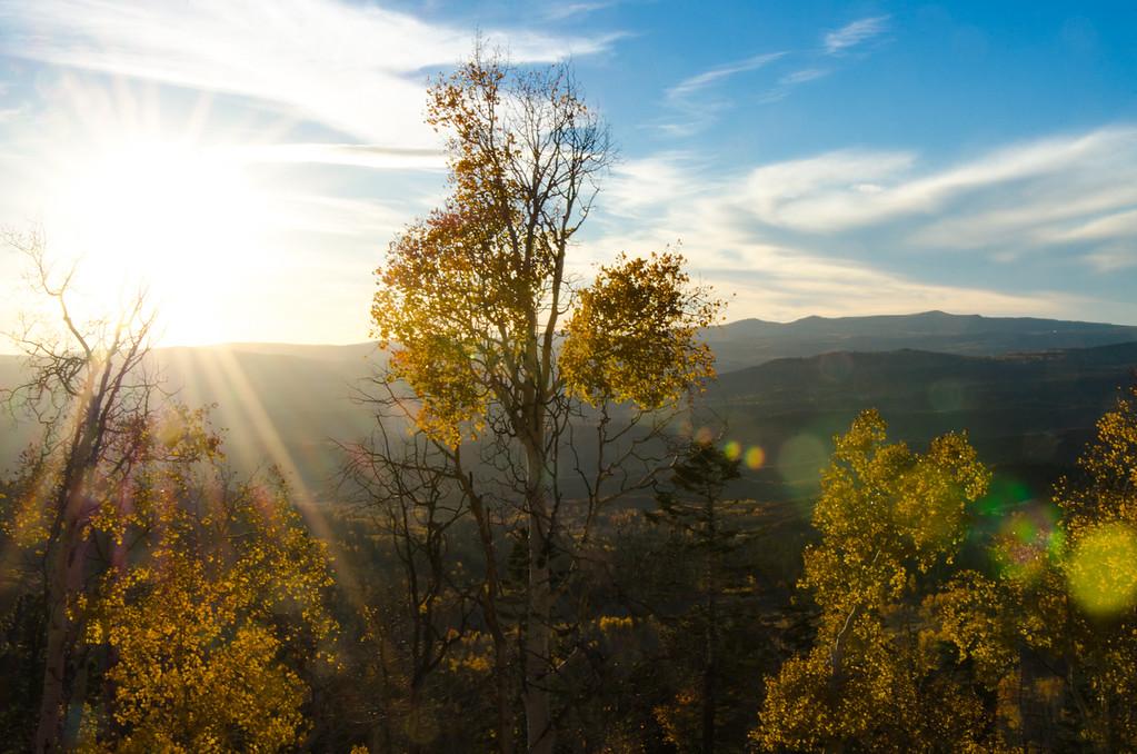 Cedar Ridge View