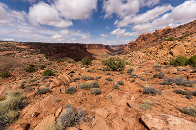 Looking over Syncline Valley on the northern side of Upheaval Dome.